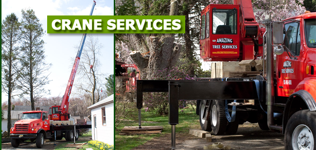 Crane Service in Essex County, NJ - image
