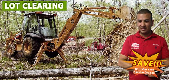 Land Clearing Essex County, NJ - banner