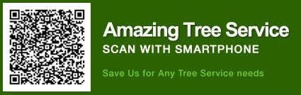 Tree Removal Estimate Essex County, NJ - Image